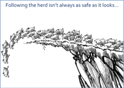 The draw to follow the herd is not as safe as it looks